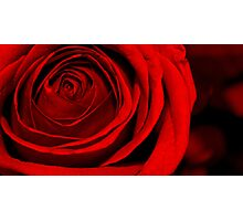 Deep Red Love Photographic Print