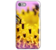 Native bee on a pink flower iPhone Case/Skin