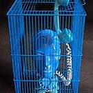 Blue Phone. by nawroski .