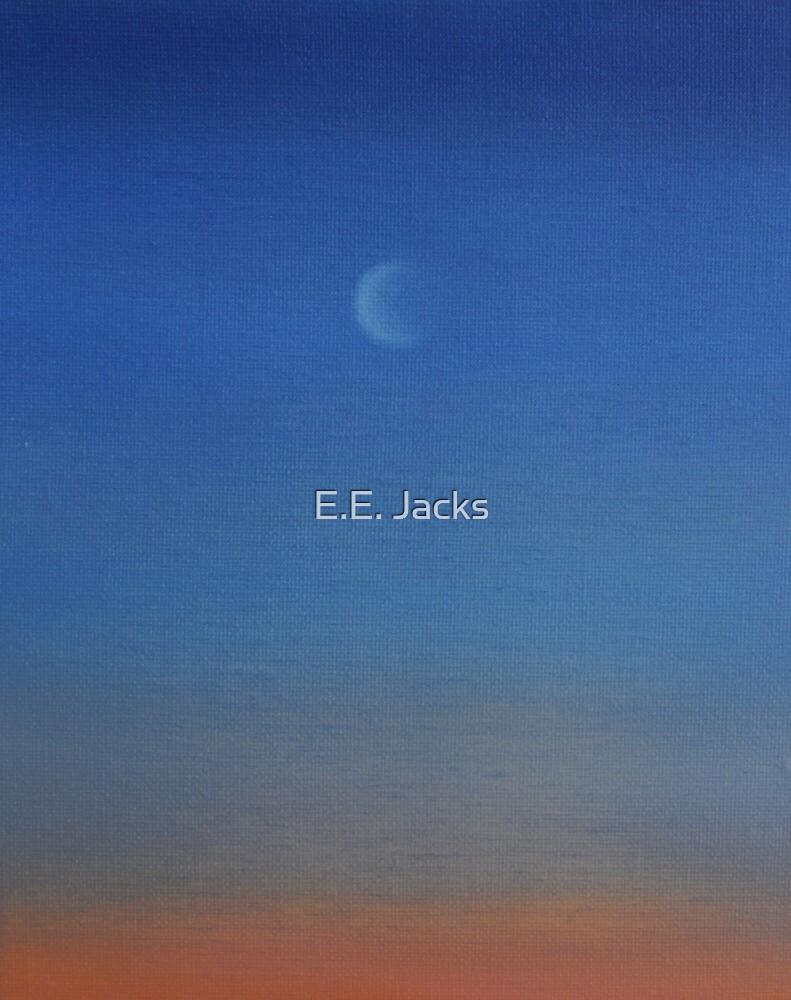 Brin's Moon by E.E. Jacks