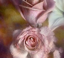 Faded Elegance by Carolyn Staut