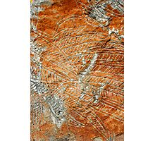 Aboriginal rock carving 3 Photographic Print