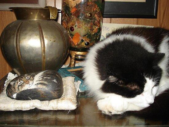 DOTTIE AND THE STONE CAT by May Lattanzio