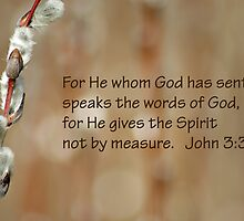 Not by measure John 3:34 by Robin Clifton