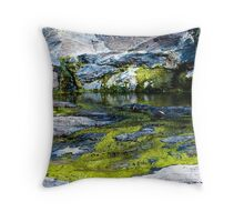 Slimey Creek - Dingly dell Throw Pillow