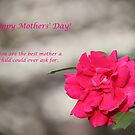 Happy Mothers&#x27; Day - Red Rose by DebbieCHayes