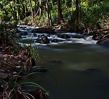 Condamine River by rossandcher
