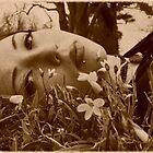 Daydream II by Kristin Sparks