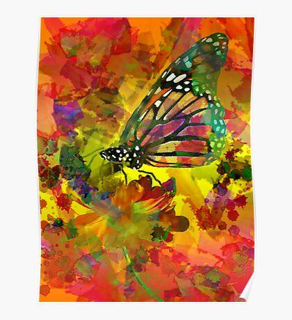 Garden of Colours Poster