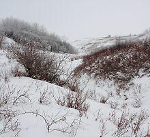 Snowy hills by zumi