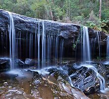 Somersby Falls..2-4-11.. by Warren  Patten