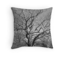 In Slumber - Land of the Lakes Throw Pillow