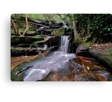Second Falls Somersby..2-4-11. Canvas Print