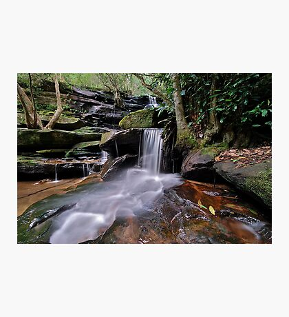 Second Falls Somersby..2-4-11. Photographic Print