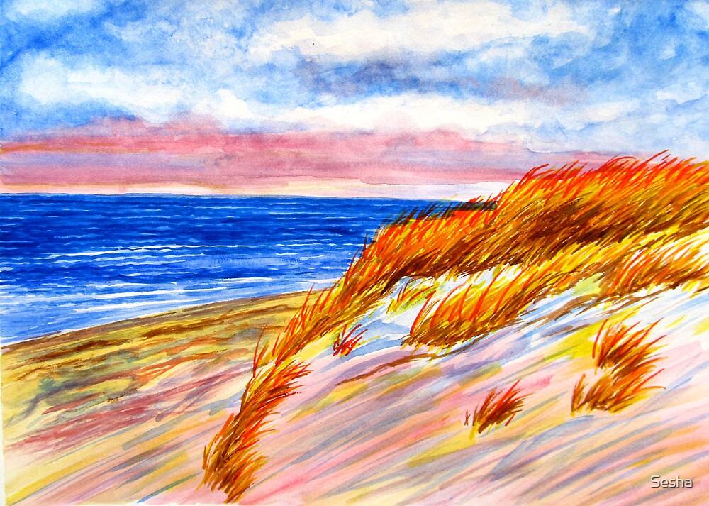 Dune at Dusk by Sesha