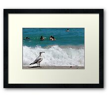 A Seagulls Point of View Framed Print