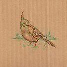 card bird by Andrew Kilgower