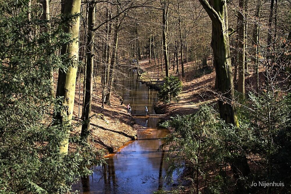 Spring Stream in the Forest by Jo Nijenhuis