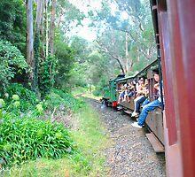 [Life] Train ride through the valley by AuroraPhoto