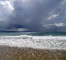 Edge of a Storm by janewiebenga