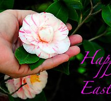 Happy Easter Card by TJ Baccari Photography
