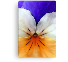 Proud to be a Pansy Canvas Print