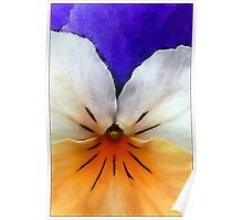 Proud to be a Pansy Poster