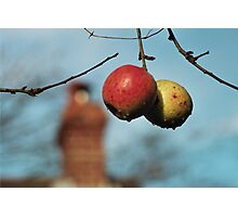 Pair of Apples In front of House Photographic Print