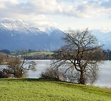 Lake Rieg: Spring is Coming by Kasia-D