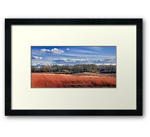 Beauty and the Bog - Open Spaces Framed Print