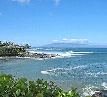 Honokeana Bay, Maui, Hawaii by Brenda Boisvert