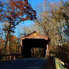 Covered Bridge - Jerusalem Mill in Maryland by Jackie Mayblum