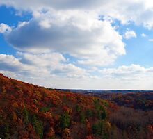View From the Top - Rocks State Park by Jackie Mayblum