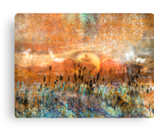 Pond Play... Even dragonflies need the Sun Canvas Print