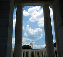 To The Brave Fallen - Arlington, VA by Jackie Mayblum