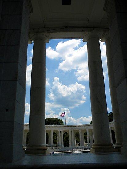 To The Brave Fallen - Arlington, VA by Jackie Mayblum