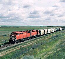 Red Barn on the Prairies by Shawn Duren