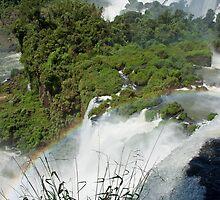 Iguazu Falls Rainbow by Carol Bock