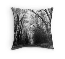 Entrance To The Afterlife Throw Pillow