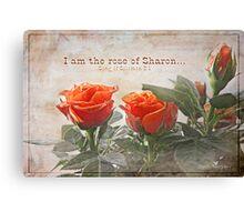 Rose of Sharon Canvas Print