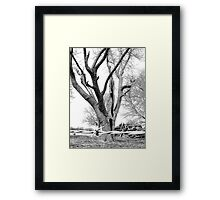 Fighting For Survival Framed Print