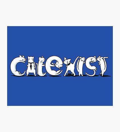 Cat-Exist | Coexist Photographic Print