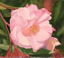 Oleander - Watercolor miniature by DiannesArt
