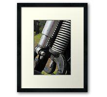 Springer - color Framed Print