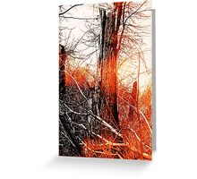 Burning Light Greeting Card