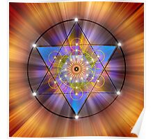 Sacred Geometry 44 Poster
