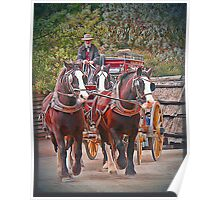 Clydesdales Poster