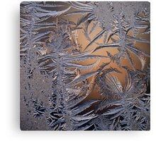 frost 2 Canvas Print