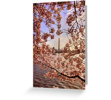 Cherry Blossoms And the Washington Monument Greeting Card