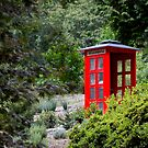 Telephone Box by Cathy Middleton